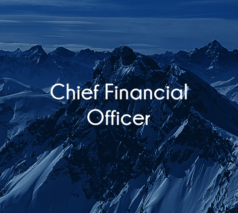 Healthcare Chief Financial officer jobs